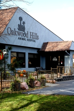 Oakwood Hills Animal Hospital - Veterinarians serving Eau Claire, Chippewa Falls, and Altoona, WI - Welcome to our site!